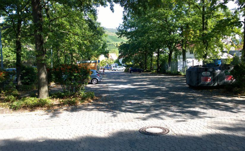 GUD-Veranstaltung: Besichtigung klimarelevanter Bäume in Zwingenberg (Sa., 05.09.2020, 17 Uhr, Melibokusparkplatz)